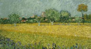 Van Gogh Up Close: Not the Movie