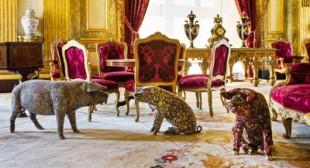 Wim Delvoye: Blame it on Paris
