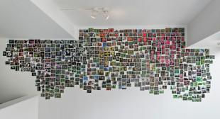 Jayce Salloum's Photo Clusters Revamp Legacies of Blossfeldt, Cartier-Bresson
