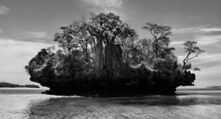 Sebastião Salgado on the Genesis of…Genesis
