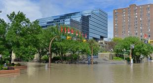 Updated: Alberta Floods Impact the Art Scene