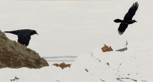 Slideshow: A Lifetime of Alex Colville Prints, in Sackville