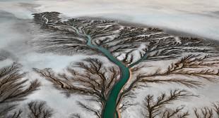 Ed Burtynsky's Watermark Wins $100,000 Critics' Prize