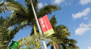 Miami Tip Sheet: Canadian Galleries & Artists at the Fairs