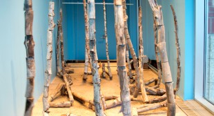 Corinne Thiessen's Collapsing Trees Mount a Warning
