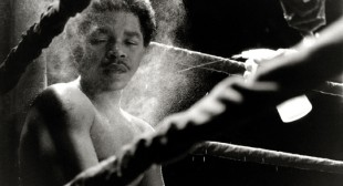 Boxing: The Sweet Science