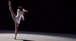 Steve Martin, National Ballet to Celebrate Lawren Harris