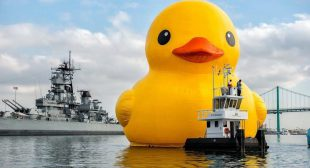 News in Brief: Mid-Career Artists Awarded, Inuit Art in Washington, DC, and Copyright Battle Waged Over Rubber Duck