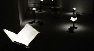 Banned Books Take Flight In Robyn Moody Show