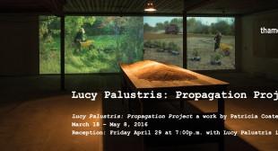 Lucy Palustris: Propagation Project