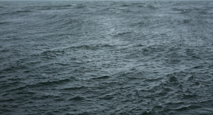 Conversation: Wolfgang Tillmans Considers Three of His Own Photographs