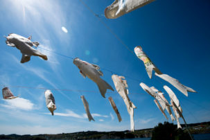 The World's Newest Biennale, in Outport Newfoundland